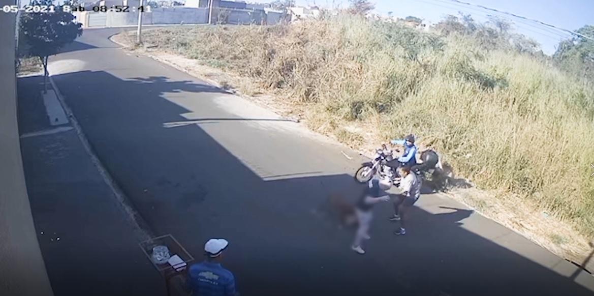 Em uma semana, dois ataques de pitbulls são registrados em Rio Preto; vídeo - Reprodução/Twitter